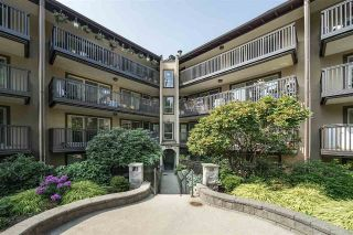 Main Photo: 118 9847 MANCHESTER Drive in Burnaby: Cariboo Condo for sale (Burnaby North)  : MLS®# R2296327