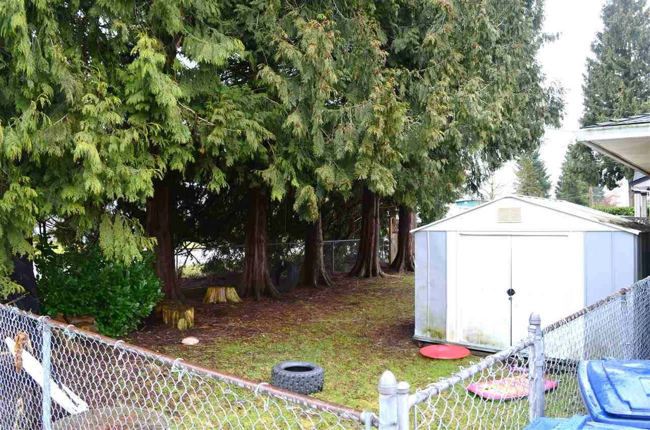 "Photo 12: 14180 109 Avenue in Surrey: Bolivar Heights House for sale in ""Bolivar Heights"" (North Surrey)  : MLS® # R2144772"