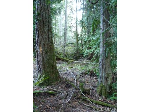 Main Photo: A East Sooke Road in SOOKE: Sk East Sooke Land for sale (Sooke)  : MLS® # 369889