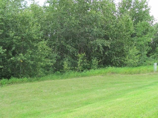 Main Photo: 37, 56503 RR 231: Rural Sturgeon County Rural Land/Vacant Lot for sale : MLS®# E4076582