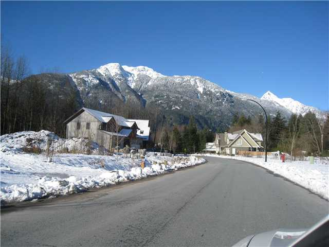 Main Photo: 41441 DRYDEN Road in Squamish: Brackendale Home for sale : MLS®# V921562