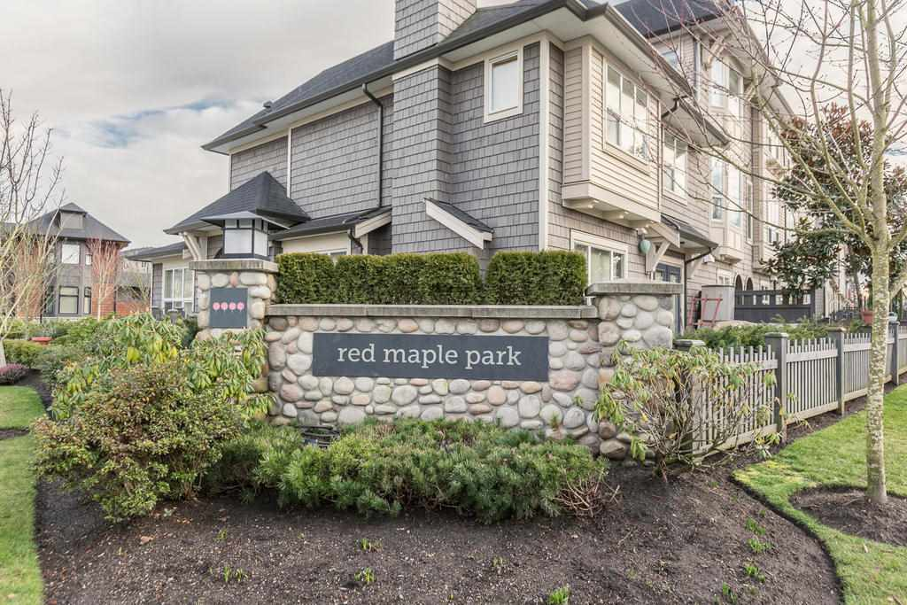 "Main Photo: 164 7938 209 Street in Langley: Willoughby Heights Townhouse for sale in ""RED MAPLE PARK"" : MLS® # R2102170"