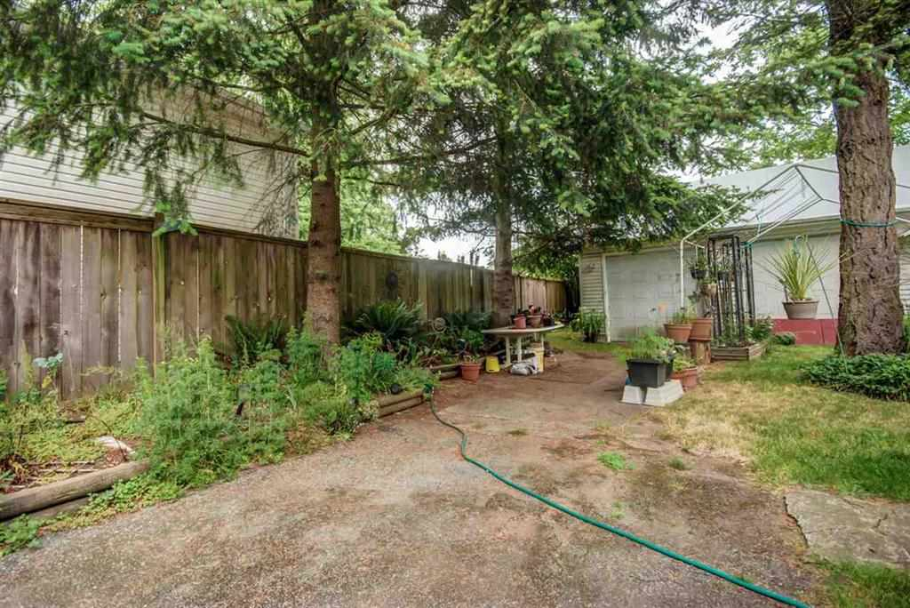 Photo 3: 10640 138 Street in Surrey: Whalley House for sale (North Surrey)  : MLS® # R2134878