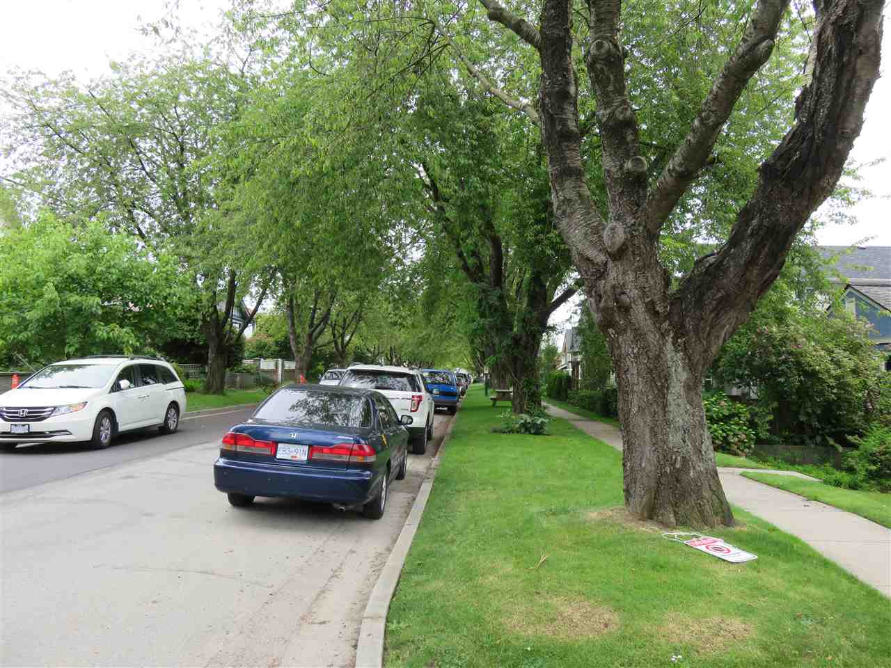 The 1400 block of East 20th is a pretty, tree-lined street!