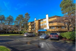 "Main Photo: 256 7293 MOFFATT Road in Richmond: Brighouse South Condo for sale in ""DORCHESTER CIRCLE"" : MLS® # R2230563"