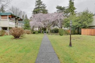 "Main Photo: 946 WESTVIEW Crescent in North Vancouver: Delbrook Townhouse for sale in ""CYPRESS GARDENS"" : MLS®# R2270788"