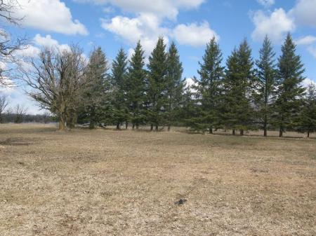 Photo 7: Photos: 32 GREWINSKI Drive in Lac Du Bonnet: Residential for sale (Lac du Bonnet)  : MLS® # 1108535