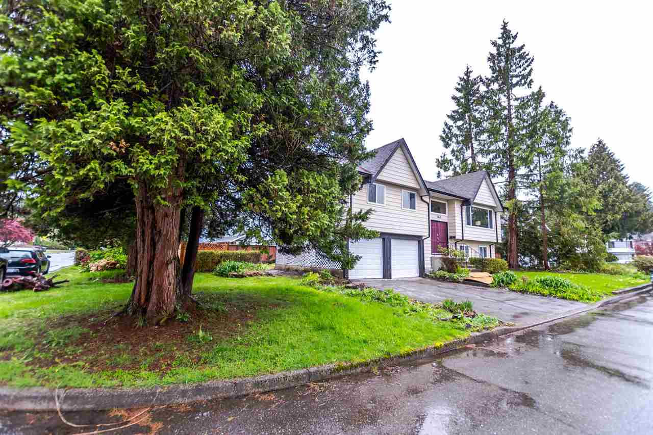 "Photo 3: 3641 VINEWAY Street in Port Coquitlam: Lincoln Park PQ House for sale in ""LINCOLN PARK"" : MLS® # R2162522"