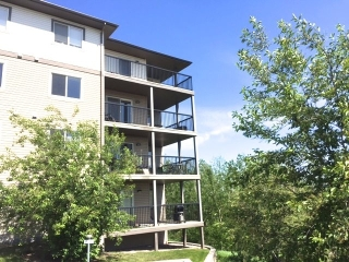 Main Photo: 207 1188 HYNDMAN Road in Edmonton: Zone 35 Condo for sale : MLS® # E4066589