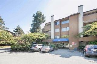 "Main Photo: 242 7293 MOFFATT Road in Richmond: Brighouse South Condo for sale in ""DORCHESTER CIRCLE"" : MLS® # R2241733"