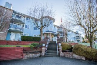 "Main Photo: 212 11510 225 Street in Maple Ridge: East Central Condo for sale in ""RIVERSIDE"" : MLS® # R2248146"