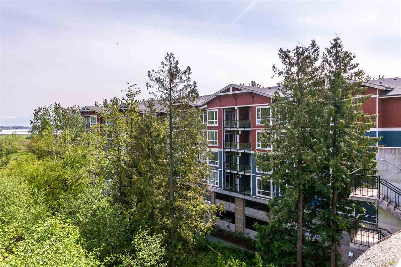 "Main Photo: 106 2238 WHATCOM Road in Abbotsford: Abbotsford East Condo for sale in ""Waterleaf"" : MLS®# R2279471"