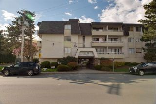 "Main Photo: 105 9477 COOK Street in Chilliwack: Chilliwack N Yale-Well Condo for sale in ""WINDSOR PINES"" : MLS®# R2243811"