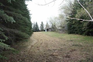 Main Photo: 9 61076 TWP RD 462A: Rural Wetaskiwin County Cottage for sale : MLS®# E4111467