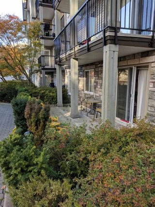 "Main Photo: 105 14877 100 Avenue in Surrey: Guildford Condo for sale in ""Chatsworth GardensII"" (North Surrey)  : MLS®# R2317011"