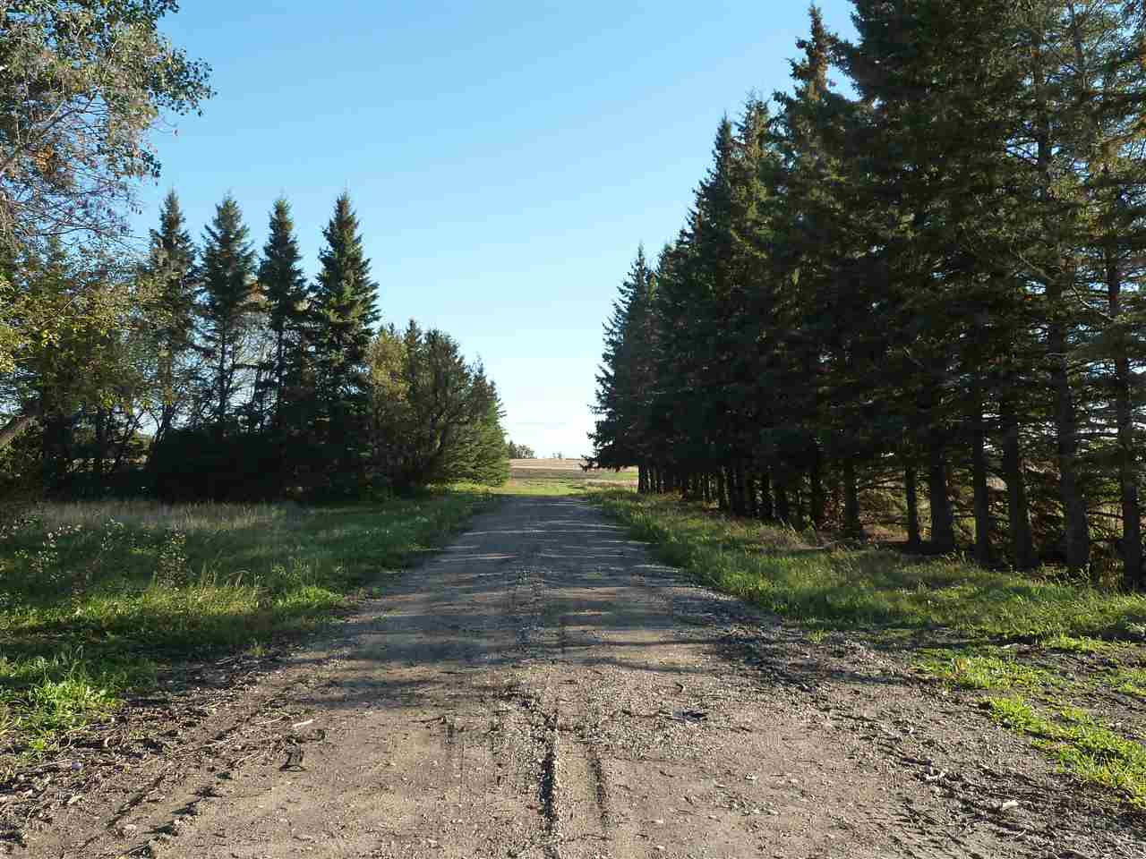 FEATURED LISTING: Hwy 827 Twp Road 610 Rural Thorhild County
