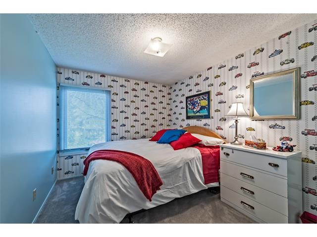 Photo 20: 551 PARKRIDGE Drive SE in Calgary: Parkland House for sale : MLS® # C4045891