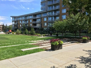 Main Photo: 109 2510 109 Street in Edmonton: Zone 16 Condo for sale : MLS(r) # E4054279