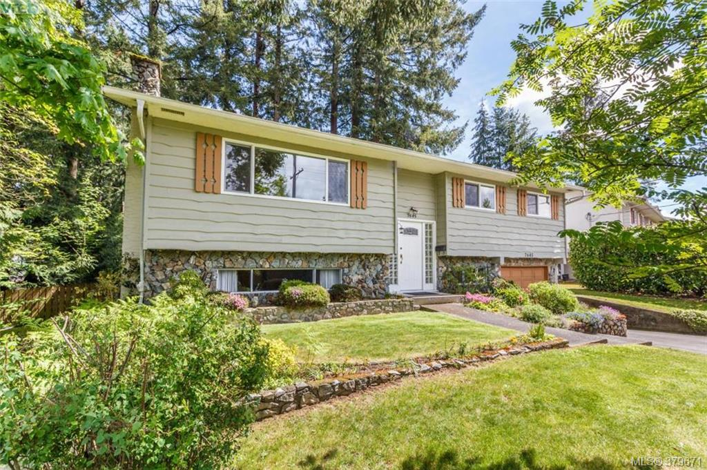 Main Photo: 7645 Wallace Drive in SAANICHTON: CS Saanichton Single Family Detached for sale (Central Saanich)  : MLS® # 379671