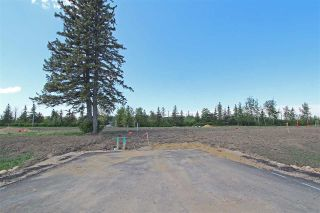 Main Photo: 6 - 53217 RR 263: Rural Parkland County Rural Land/Vacant Lot for sale : MLS®# E4114098