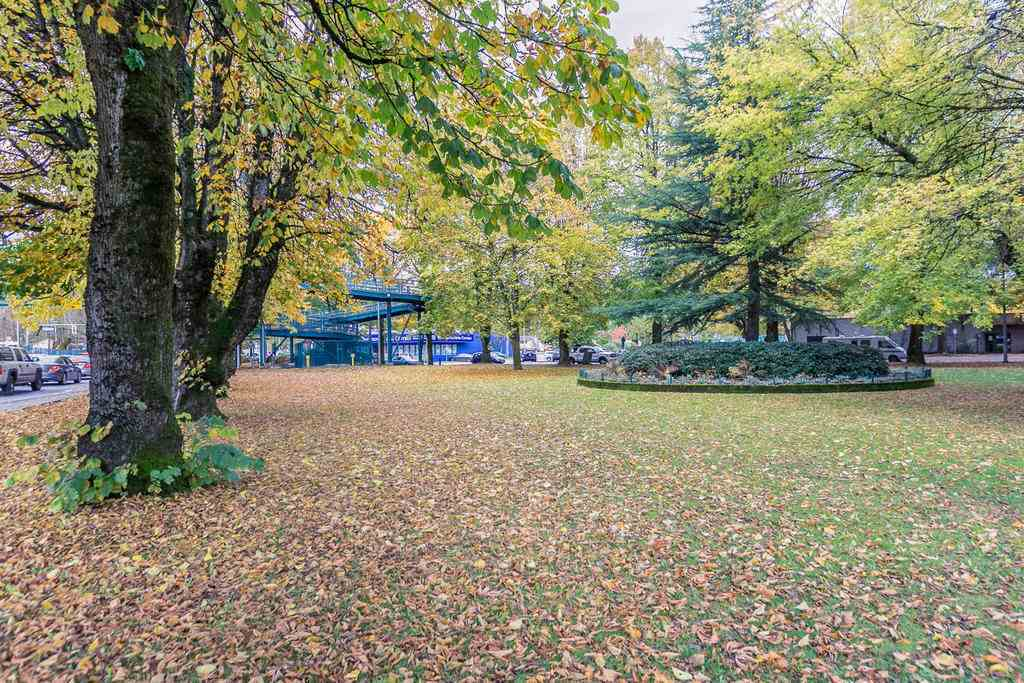 "Photo 17: A235 2099 LOUGHEED Highway in Port Coquitlam: Glenwood PQ Condo for sale in ""SHAUGHNESSY SQUARE"" : MLS® # R2173116"