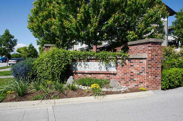 "Main Photo: 178 2450 161A Street in Surrey: Grandview Surrey Townhouse for sale in ""GLENMORE"" (South Surrey White Rock)  : MLS®# F1413648"