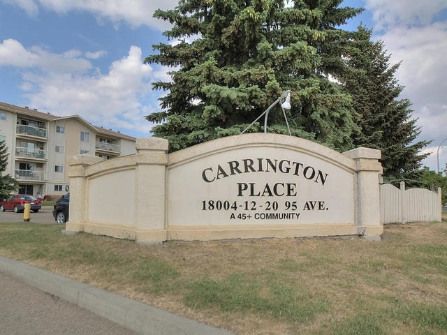 Photo 24: 313 18020 95 Avenue in Edmonton: Zone 20 Condo for sale : MLS® # E4059239
