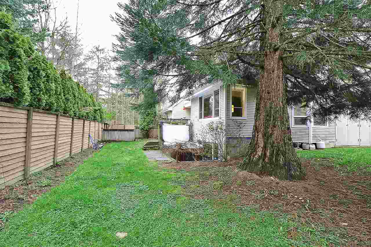 "Photo 20: 5 13918 58 Avenue in Surrey: Panorama Ridge Townhouse for sale in ""ALDER PARK"" : MLS® # R2155360"