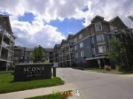 Main Photo: 402 10121 80 Avenue in Edmonton: Zone 17 Condo for sale : MLS(r) # E4060049