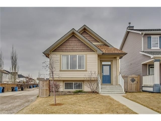 Main Photo: 11 COPPERFIELD Terrace SE in Calgary: Copperfield House for sale : MLS(r) # C4112341