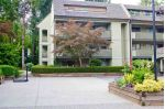 "Main Photo: 302 1210 PACIFIC Street in Coquitlam: North Coquitlam Condo for sale in ""Glenview Manor"" : MLS®# R2286235"
