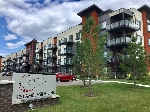 Main Photo: 404 320 AMBLESIDE in Edmonton: Zone 56 Condo for sale : MLS® # E4078229