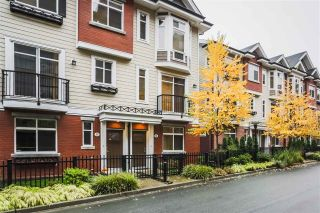 "Main Photo: 75 8068 207 Street in Langley: Willoughby Heights Townhouse for sale in ""Yorkson Creek South"" : MLS® # R2218677"