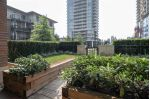 "Main Photo: 104 1135 WINDSOR Mews in Coquitlam: New Horizons Condo for sale in ""The Mews"" : MLS® # R2220828"