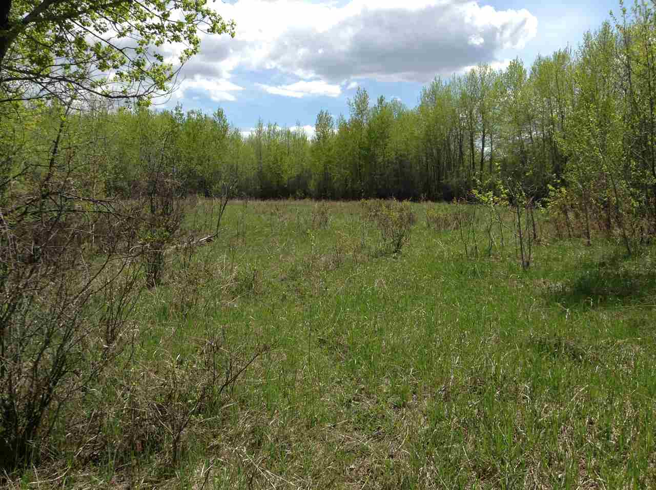 Main Photo: Twp. 574 RR 181: Rural Lamont County Rural Land/Vacant Lot for sale : MLS® # E4065755