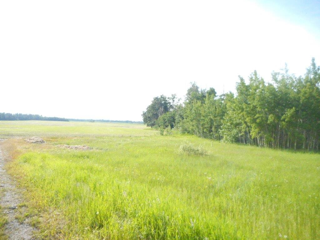 Main Photo: Hwy 834 & Twp 530: Rural Beaver County Rural Land/Vacant Lot for sale : MLS® # E4069549