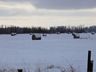 Main Photo: Twsp 575A Range Road 230: Rural Sturgeon County Rural Land/Vacant Lot for sale : MLS®# E4087454