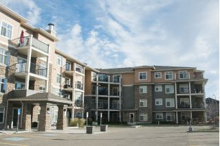 Main Photo: 212 6070 SCHONSEE Way in Edmonton: Zone 28 Condo for sale : MLS®# E4134081