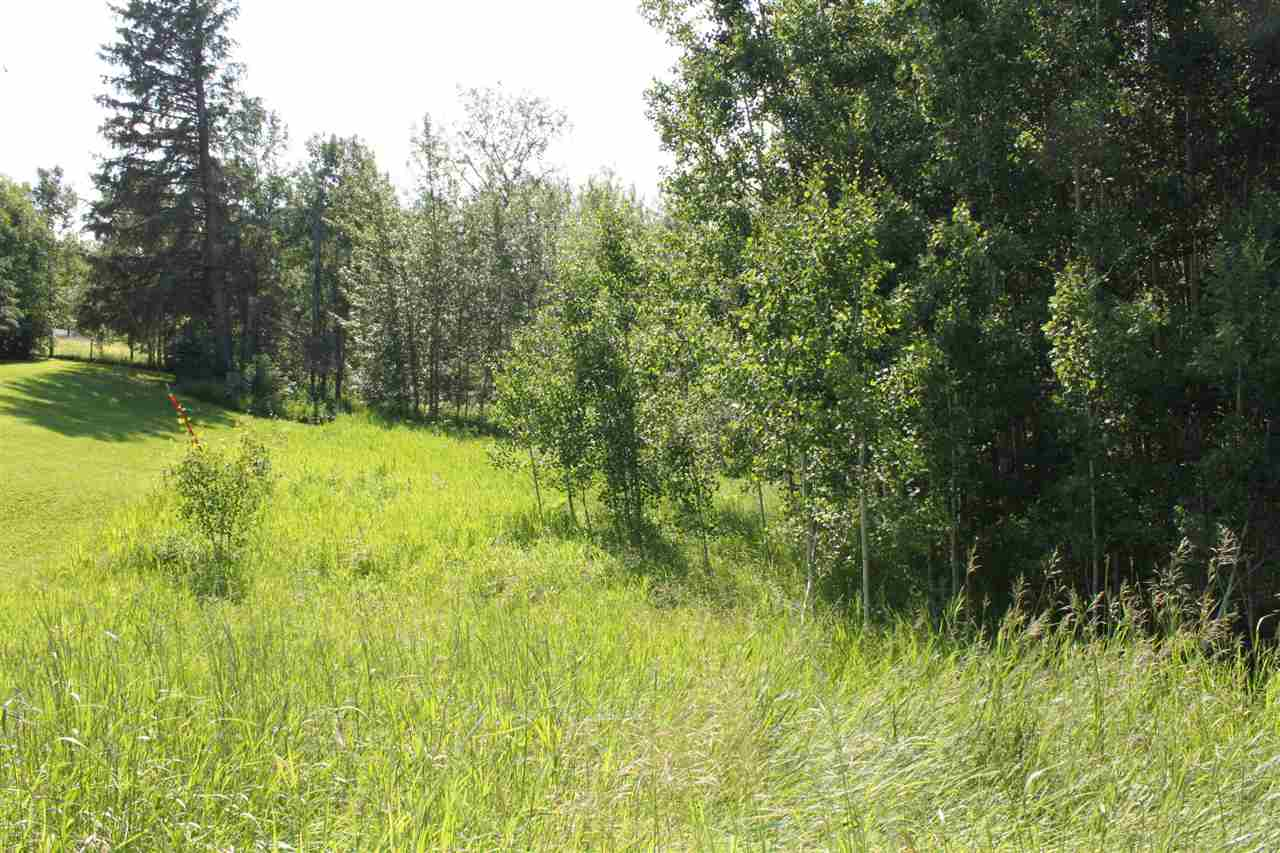 Photo 5: 12 Gina Way-3104 TWP RD 524B: Rural Parkland County Rural Land/Vacant Lot for sale : MLS® # E4071420