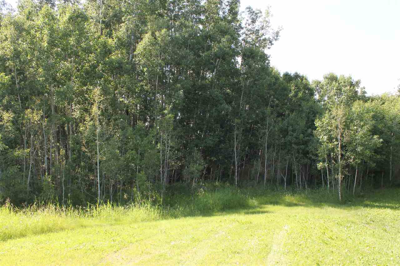 Photo 3: 12 Gina Way-3104 TWP RD 524B: Rural Parkland County Rural Land/Vacant Lot for sale : MLS® # E4071420