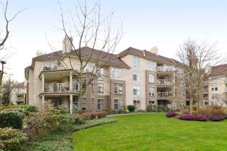 "Main Photo: 415 15350 19A Avenue in Surrey: King George Corridor Condo for sale in ""Stratford Gardens"" (South Surrey White Rock)  : MLS® # R2249496"