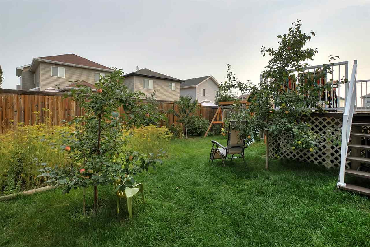 The fenced & landscaped yard offers several producing fruit trees & a garden area.