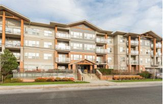 "Main Photo: 214 20219 54A Avenue in Langley: Langley City Condo for sale in ""Suede"" : MLS® # R2227815"