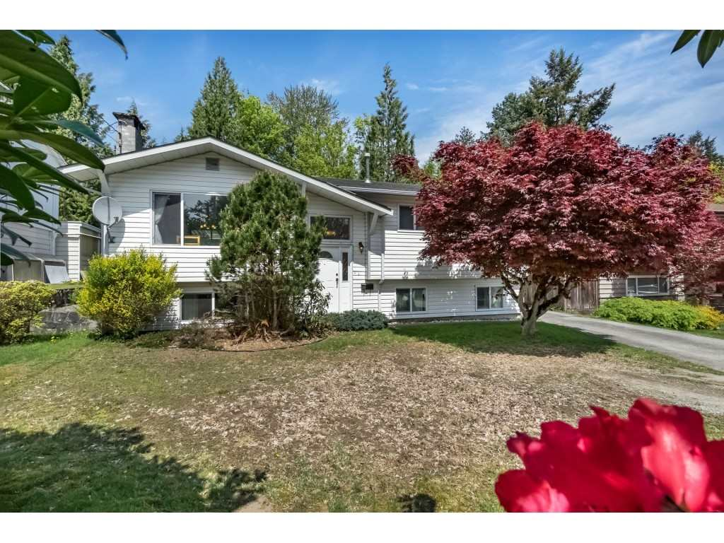 Main Photo: 1807 CHALMERS Avenue in Port Coquitlam: Oxford Heights House for sale : MLS®# R2264925