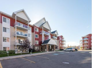 Main Photo: 216 2203 44 Avenue in Edmonton: Zone 30 Condo for sale : MLS®# E4131753