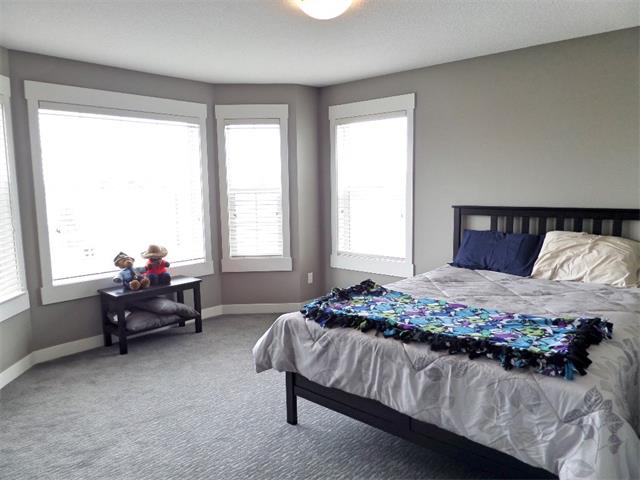 Photo 29: 494 Rainbow Falls Drive: Chestermere House for sale : MLS® # C4012295