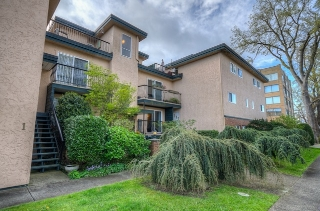 Main Photo: 3 101 St. Lawrence Street in VICTORIA: Vi James Bay Townhouse for sale (Victoria)  : MLS(r) # 362889