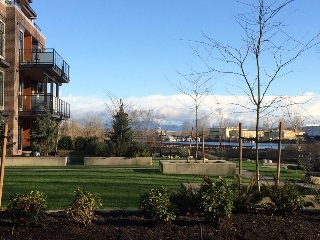 "Main Photo: 110 262 SALTER Street in New Westminster: Queensborough Condo for sale in ""Portage"" : MLS(r) # R2120767"