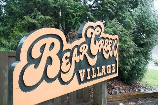 "Main Photo: 42 8555 KING GEORGE Boulevard in Surrey: Queen Mary Park Surrey Townhouse for sale in ""Bear Creek Village"" : MLS(r) # R2139269"