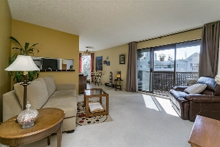 "Main Photo: 408 365 GINGER Drive in New Westminster: Fraserview NW Condo for sale in ""FRASER MEWS"" : MLS(r) # R2158764"